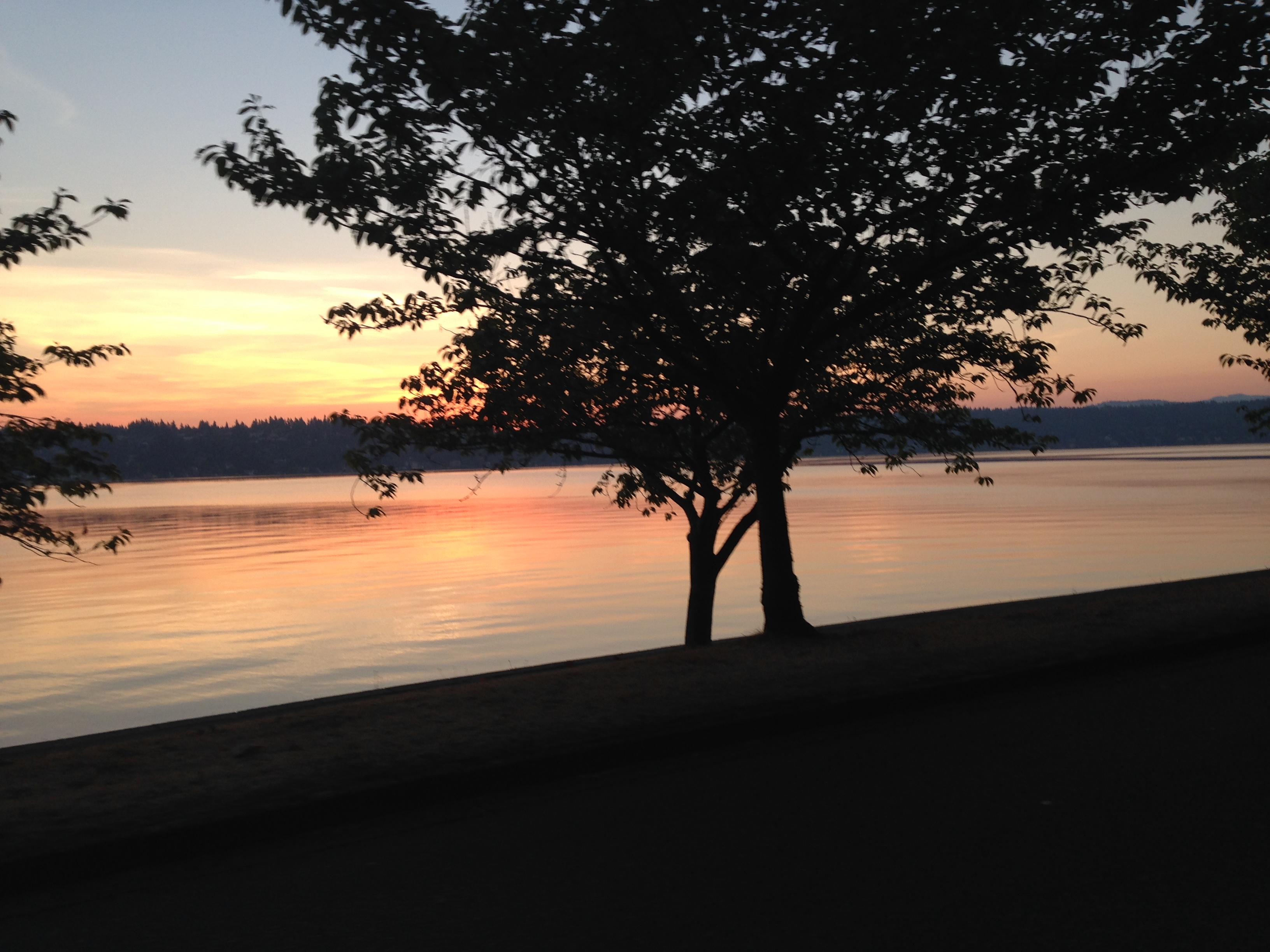 Sunrise over Lake Washington. Photo by Steve Frey.